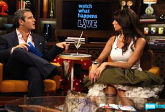 Picture 21 Bravo TV's Andy Cohen Talks Refereeing The Real Housewives