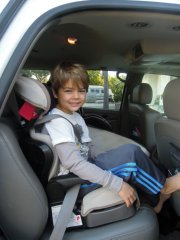 Booster Car Seat Requirements Breezy Mama