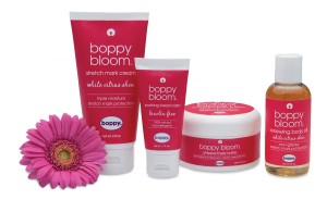 boppy bloom group isolated